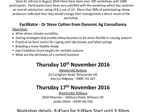 Upcoming More Lambs More Often workshop